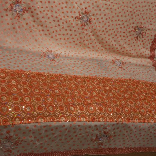 palu of peach sari with silver sequins
